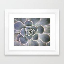 Succulent Leaf Close Up Photography   Plant   Cactus   Botanical Framed Art Print