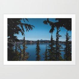 peaking through the pines Art Print
