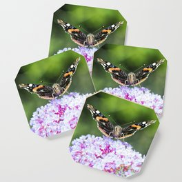 Butterfly IV Coaster