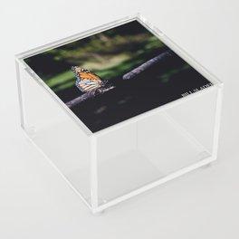 Monarch Acrylic Box