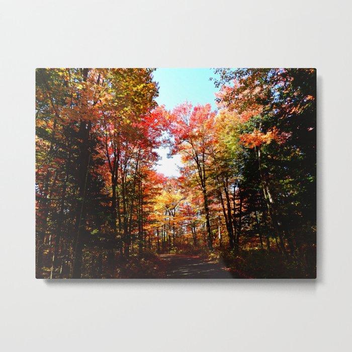 Eastern Quebec in Autumn Metal Print