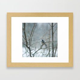 Crown of Snow Framed Art Print