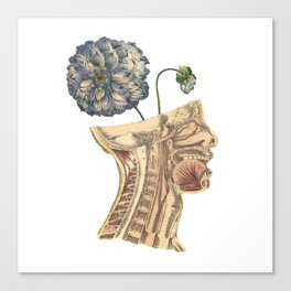 A Growing Mind Canvas Print