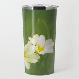 Wild Primrose flowers (Primula vulgaris) among grass. Norfolk, UK. Travel Mug