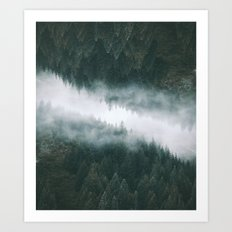 Forest Reflections IV Art Print