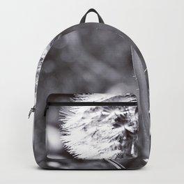 Wish Backpack
