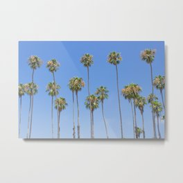 Palm Trees and Blue SKy Metal Print