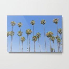Palm Trees and Blue SKy Metal Print