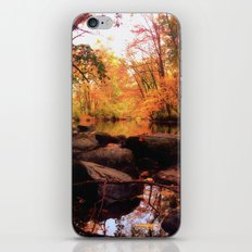 Connected iPhone & iPod Skin