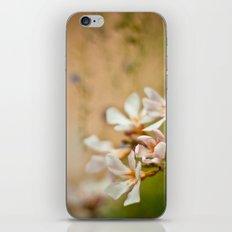 Flowers2 iPhone & iPod Skin