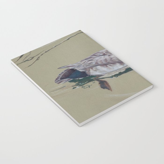 Red Crested Pochard (Netta Rufina) Colored Pencils Artwork Notebook