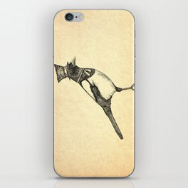Hello Mister Magpie iPhone Skin