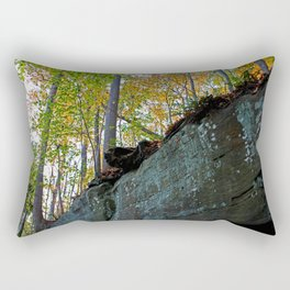 Harrowing Journey Rectangular Pillow