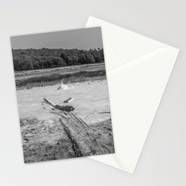 Geyser in background Stationery Cards
