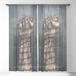 Hard Religion Sheer Curtain