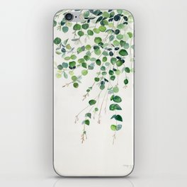 Eucalyptus Watercolor iPhone Skin
