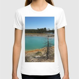 Amazing Hot Spring Colors T-shirt