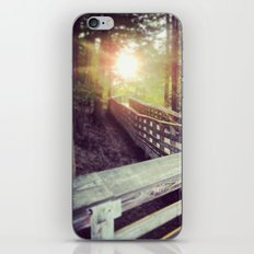 Sun in the Park iPhone Skin