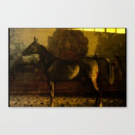 Arabian Dream Canvas Print