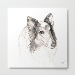 Remembering Maggie :: A Tribute to a Collie Metal Print