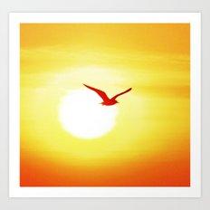 Seagull on sunset background Art Print