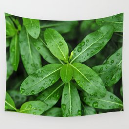 Droplets on Green Wall Tapestry