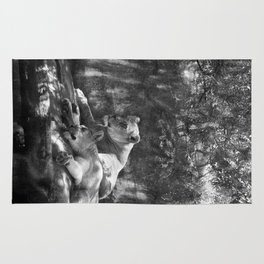 Portland Lioness B&W Rug