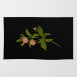 Lantana Trifolia Mary Delany Vintage Paper Flower Collage Floral Botanical Art Rug