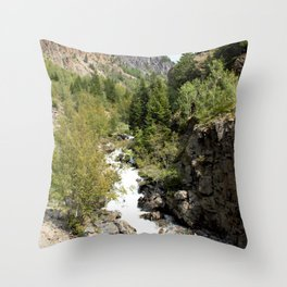 Headwaters of the Mighty Uncompahgre River Throw Pillow