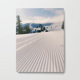 Groomed Metal Print