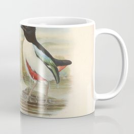 John Gould - A Monograph of the Pittidae (1880) - Pitta maxima / Ivory-breasted pitta Coffee Mug
