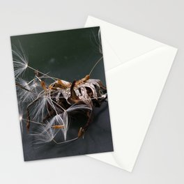pluis Stationery Cards