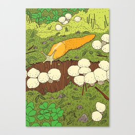Banana Slug & Mushrooms Canvas Print