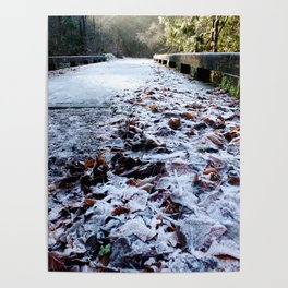 Frosty Bridge & Leaves Poster