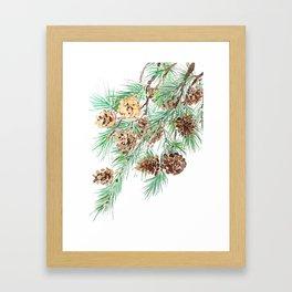 pine cones watercolor Framed Art Print