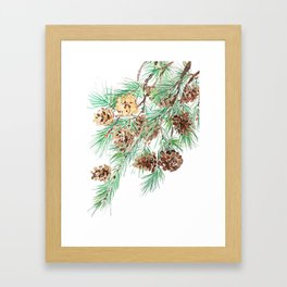 pine cones watercolor Framed Art Print