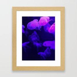 Moon Jellyfish I Framed Art Print