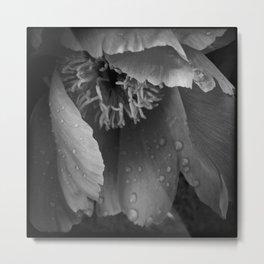 Flora 2 Metal Print