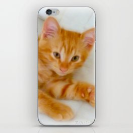 Quo - Kitten Photography By Giada Rossi iPhone Skin