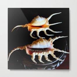Shell We Dance, Da Da Da... Metal Print