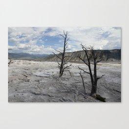 Mammoth Hot Spring  Terrace Canvas Print