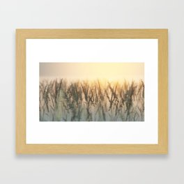 Road to Tranquillity Framed Art Print