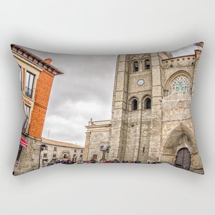Avila Rectangular Pillow