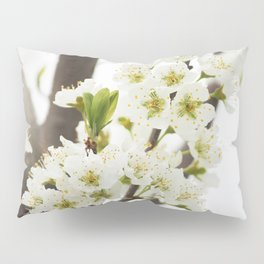 Plum Tree Blossom Pillow Sham