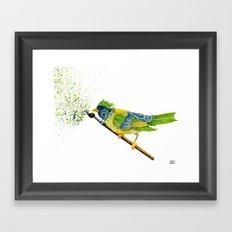 Feathers & Flecks Framed Art Print