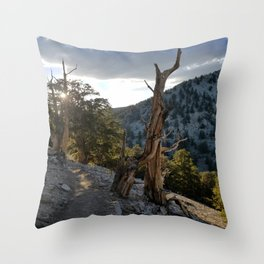 Ancient Bristlecone Pine Forest #2 Throw Pillow