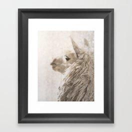 Magical White Alpaca Framed Art Print