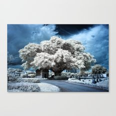 Infrared Blue Canvas Print