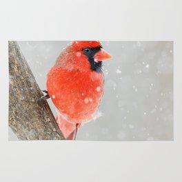 Male Northern Cardinal Rug