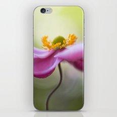 Anemone swirl iPhone & iPod Skin